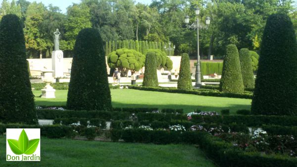 Madid Retiro Servicio de jardineria