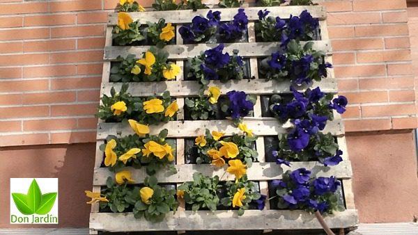 Como realizar un mini jardín vertical
