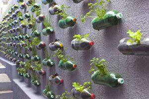 huerto vertical con garrafas
